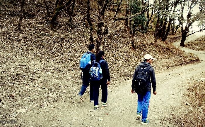 bhadraj forest trek
